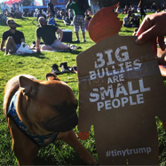 tiny trump with the stamp 'Big Buillies Are Small People' being snarreled at by a dog in Deloras Park in San Francisco